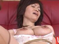 楠真由美の動画