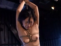 猥褻熟女 8 岡崎美女[5]