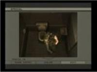 メタルギアソリッド3 普通では撮れないスネークなどをカメラに収める!