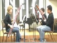 マリオシリーズのBGMをファゴット(バスーン)で四重奏してみた