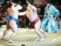 SUMOとは!!世界最強の格闘技である!![芸能/お宝]