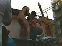 阪神優勝 【放送事故】全裸男が女性の服を無理やり。。。