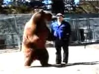 巨大なクマに殺されてしまう男性トレーナーの映像。恐ろしすぎた