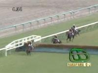 競馬の障害G1「第13回中山グランドジャンプ」で頭から落ちた競走馬が即死。