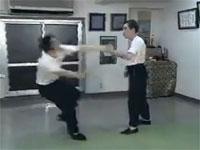 日本には凄い術者が存在する。太極拳「勁力」瀬戸敏雄が凄い。