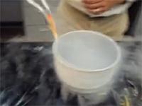 金魚を液体窒素に入れて急速冷凍⇒水に入れて解凍⇒普通に泳ぎだす動画