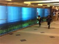 ASICSの粋な巨大広告 「マラソンランナーと並走してみる?」