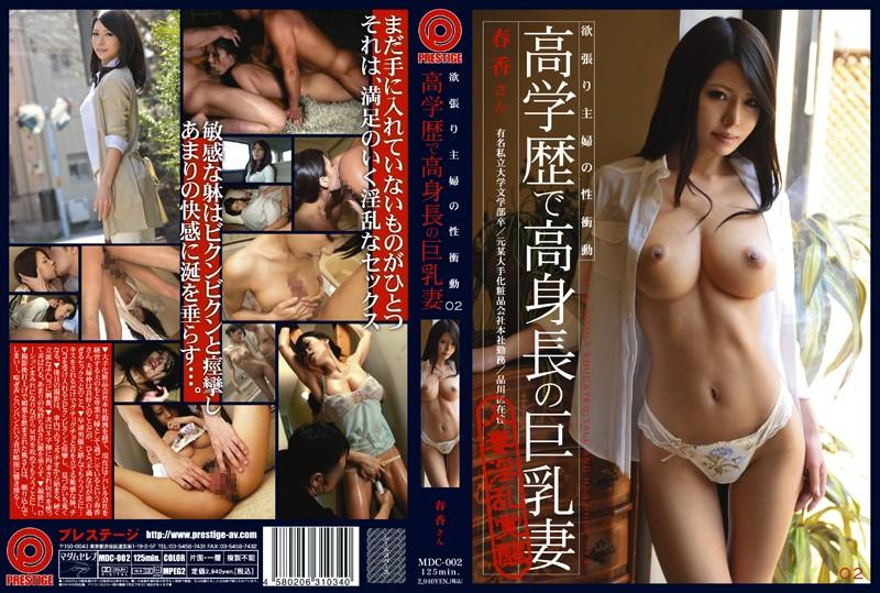 欲張り主婦の性衝動 02 高学歴で高身長の巨乳妻 真田春香