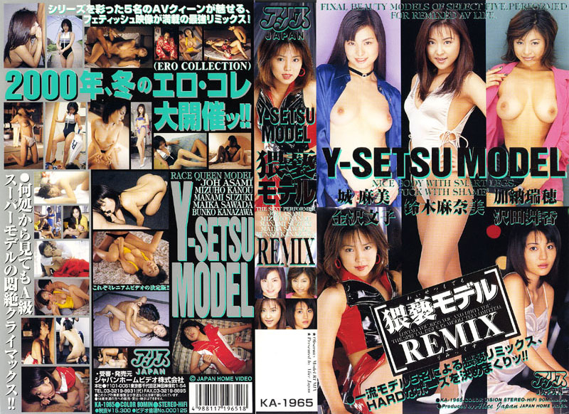 猥褻モデル REMIX 金沢文子 鈴木麻奈美 草凪純(加納瑞穂) 沢田舞香 城麻美